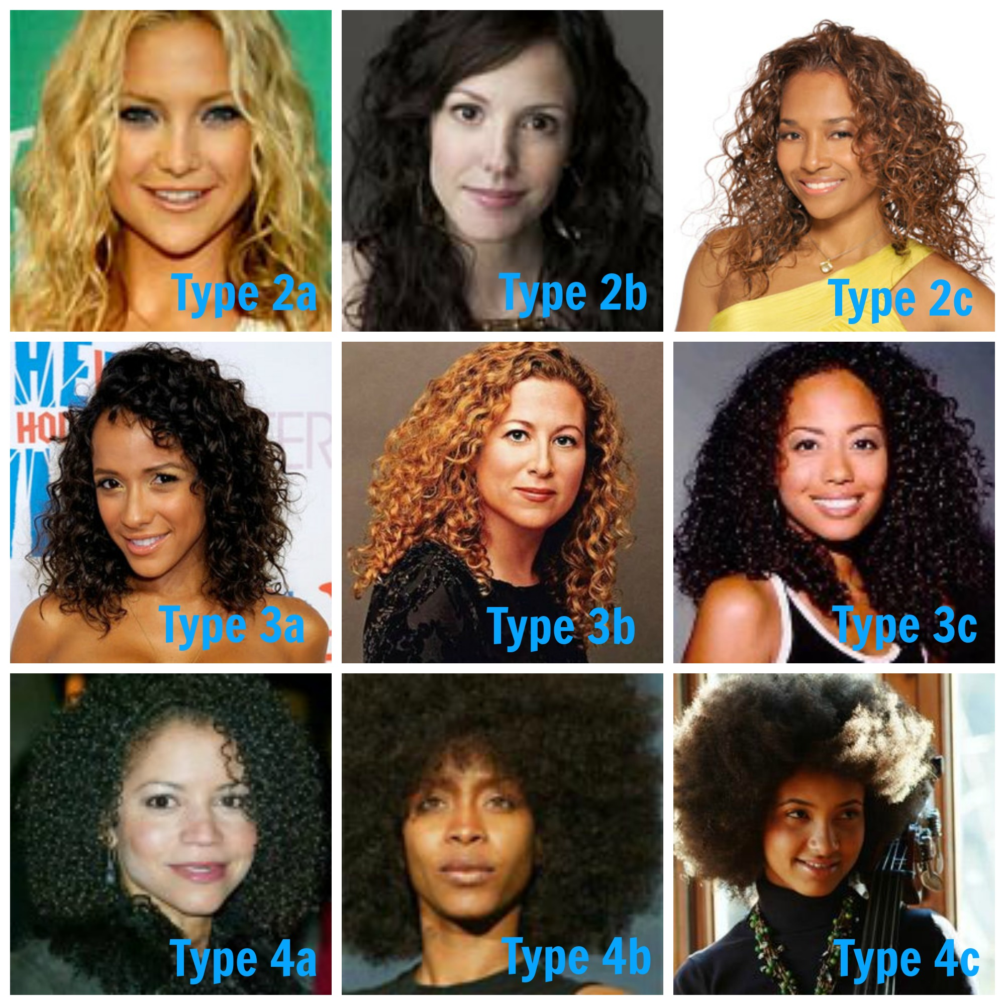 Complete hair type chart guide from various system