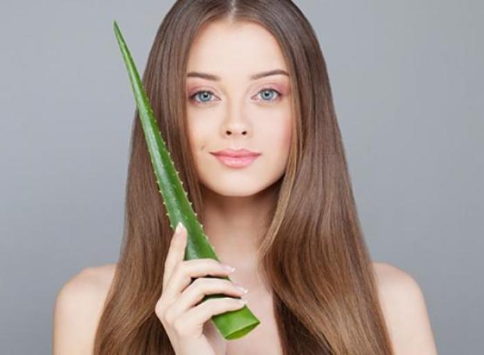 Aloe Vera For Hair – How it Can Help Your Hair