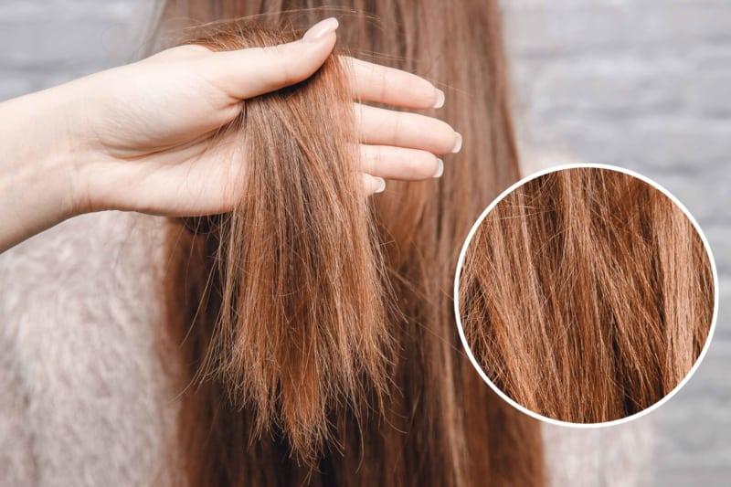 Hair Style Ideas for Damaged Hair