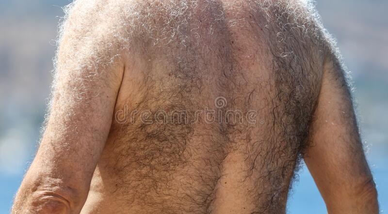 Back Hair Styles Ideas