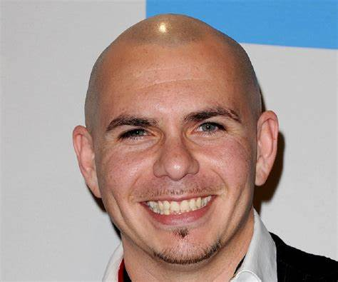 Pitbull With Hair Styling Ideas