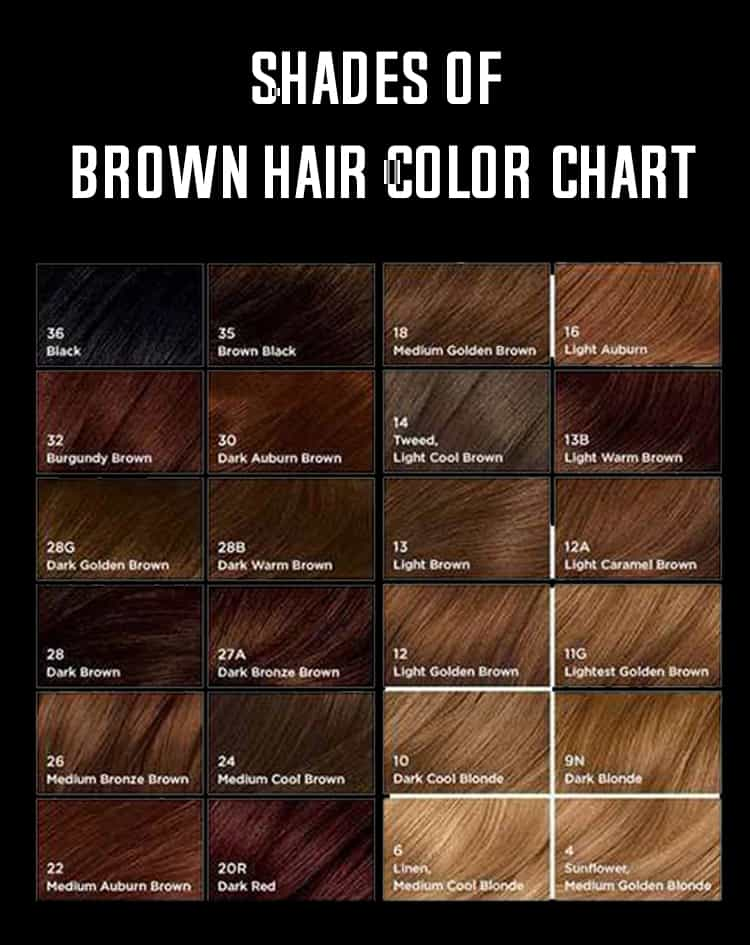 Brown Hair Color Chart – Know Your Favorite Dyes and Shades