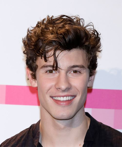 Get the Look That You Want With Shawn Mendes Hair