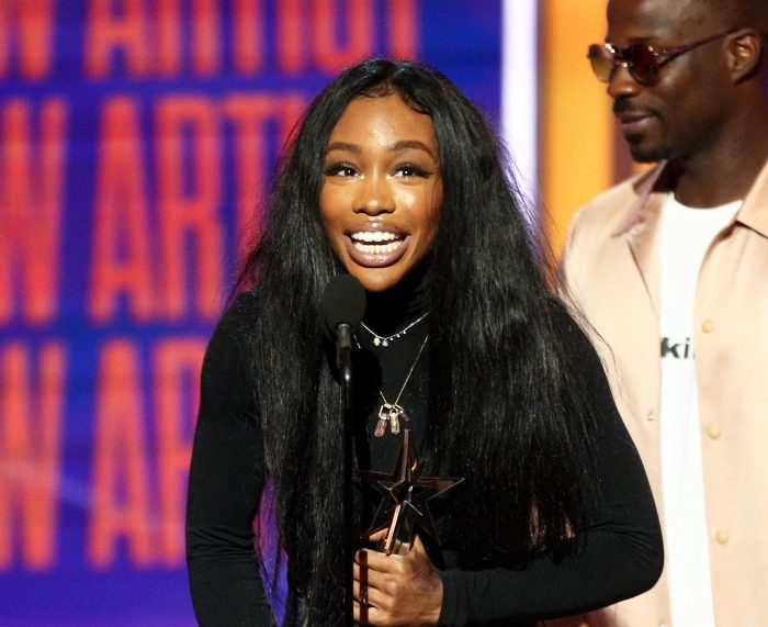 Design Ideas for Women Using Sza Real Hair Straighteners